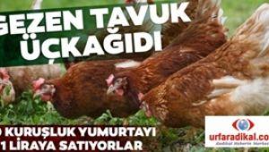 Üçkâğıtçılar 10 kuruşluk yumurtayı 1 TL'ye satıyorlar