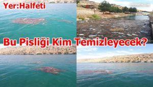 Halfeti'de Utandıran Görüntüler! Çöpten Geçilmiyor