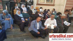 İş Adamı Tayyar Yetim, Diyarbakırlı Ailelere Destek Ziyaretinde