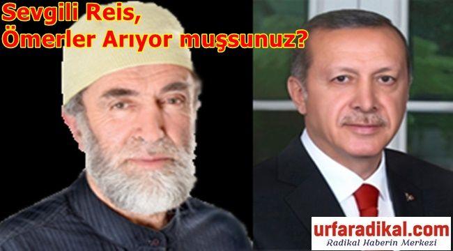 Mehmed Göktaş: Sevgili Reis, Ömerler Arıyor muşsunuz?