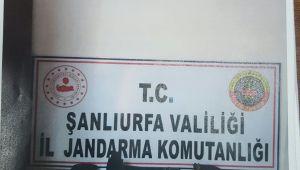 Şanlıurfa 'da Tarihi Eser Kaçakçılığı !!!