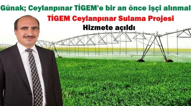 İş adamı Günak: Ceylanpınar TİGEM'e bir an önce işçi alınmalı