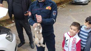 Okul Müdürü Nurettin Toğun'un Aracına Sıkışan Tavşanı İtfaiye Kurtardı (videolu)
