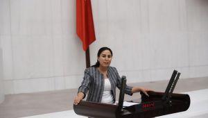 Milletvekili Sürücü Şanlıurfa'daki Hastane durumunu Meclise taşıdı