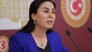 Şanlıurfa Milletvekili Ayşe Sürücü, Meclise İnsan hakları önergesi verdi