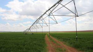 Dicle Elektrik Verimli Tarım Hikayeleri: Şanlıurfa'lı çiftçi pivot sulamayla yüzde 50 tasarruf sağladı