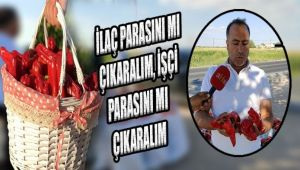 Urfalı çiftçi isyan bayrağını çekti: Bundan sonra ekmeyeceğim