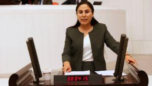 Şanlıurfa Milletvekili Ayşe SÜRÜCÜ, Şanlıurfa Cezaevini Meclise taşıdı
